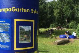 Die Litfaßsäule vom Europagarten Syke sowie jener im Hintergrund.