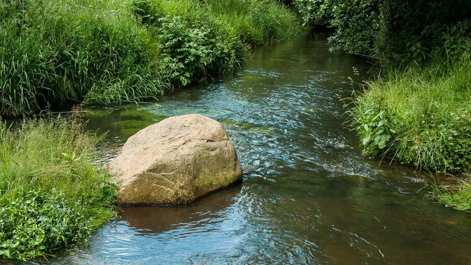 Zu sehen ist der Fluss Hache, ein Fels sowie der Uferbewuchs.
